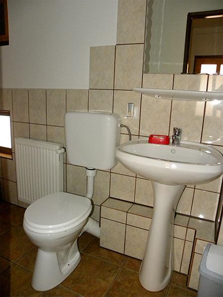 Pensiunea Rustic House - baie apartament