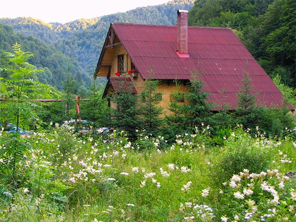 Pensiunea Rustic House - Cabana 1 exterior vara
