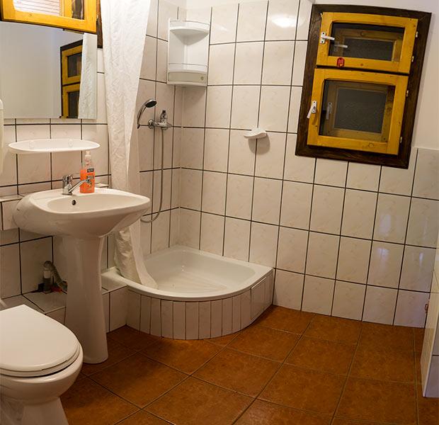 Pensiunea Rustic House - Cabana 2 baie